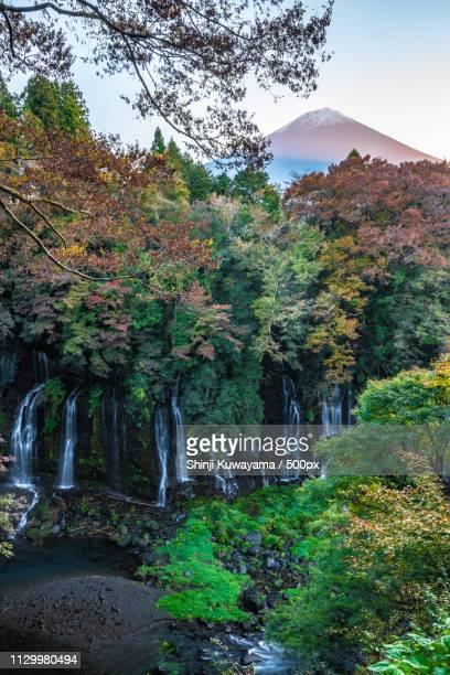 Mtfuji Over Shiraitonotaki Waterfall