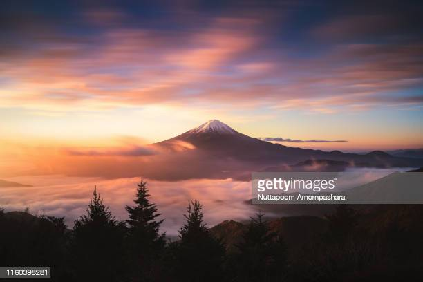mt.fuji with sea of clouds and vivid sky - yamanashi prefecture stock pictures, royalty-free photos & images