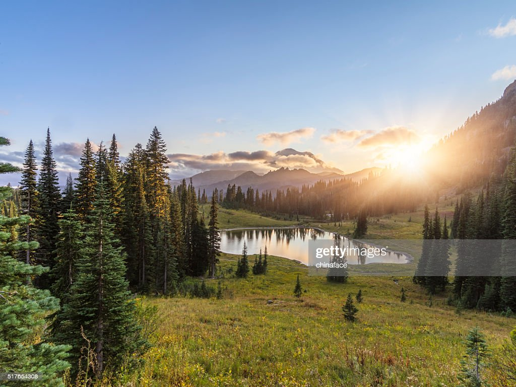 MT.Rainier in sunset : Stock Photo