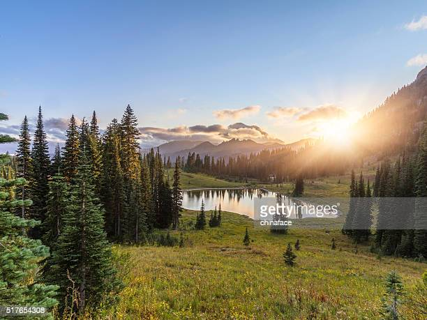 mt.rainier in sunset - sunset lake stock photos and pictures