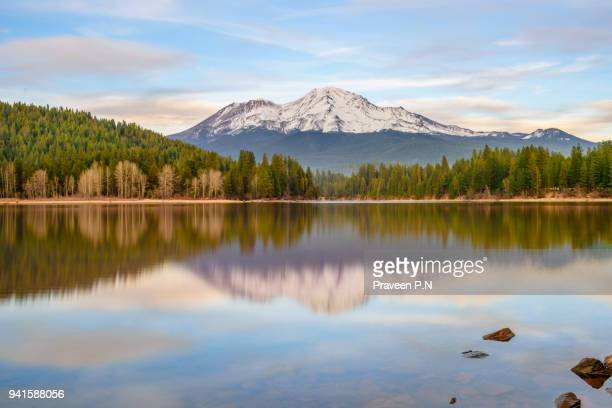 mt.shasta from lake siskiyou - mt shasta stock pictures, royalty-free photos & images