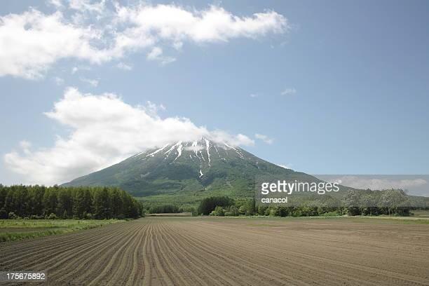 Mt.Youtei