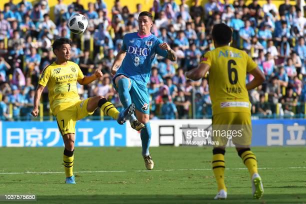 Mu Kanazaki#44 of Sagan Tosu celebrates scoring his team's first goal during the JLeague J1 match between Kashiwa Reysol and Sagan Tosu at Sankyo...