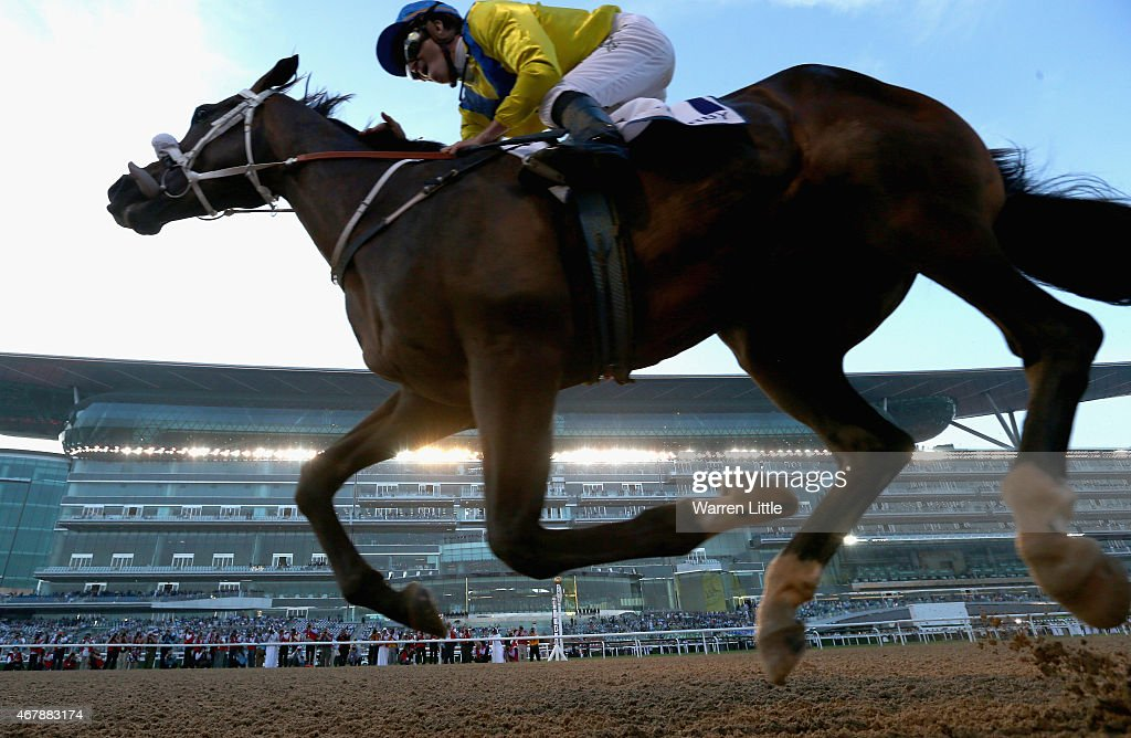 Dubai World Cup : News Photo