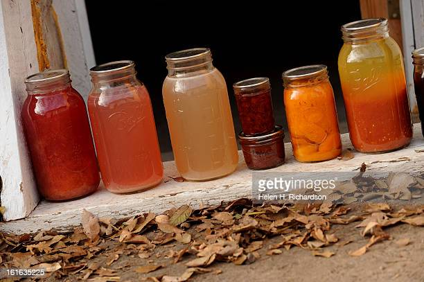 Much of the summer is spent making jams butters pastes juices and salsas for the year From left to right is Late peach juice with honey peach juice...