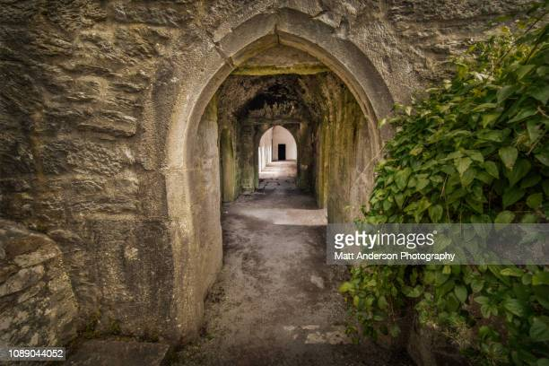 muckross abbey archway 3 - county waterford ireland stock pictures, royalty-free photos & images