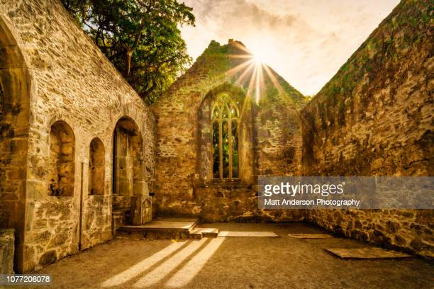 muckross abbey - county waterford ireland stock pictures, royalty-free photos & images