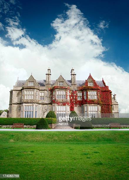muckross house - victorian style stock pictures, royalty-free photos & images