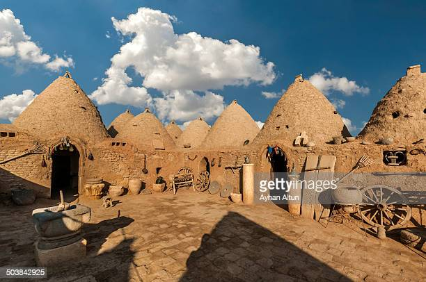 Mud brick, domed houses in ancient city of Harran