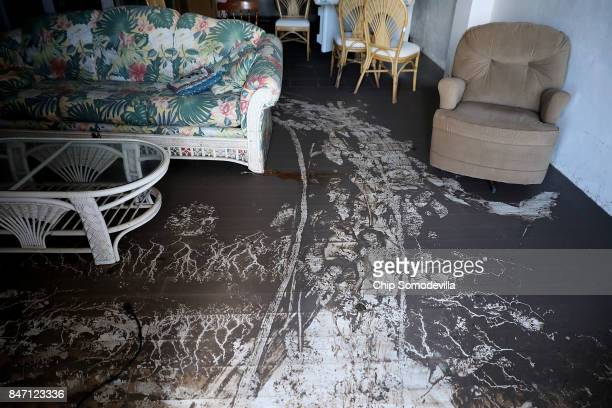 Mud deposited by the storm surge created by Hurricane Irma cake the floor of Robert and Nancy Heater's home September 14 2017 near Big Pine Key...