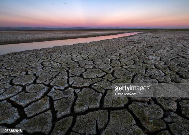 Mud is seen on land that was under the Salton Sea a few years ago on January 1 2019 near Calipatria California United States Scientists believe that...