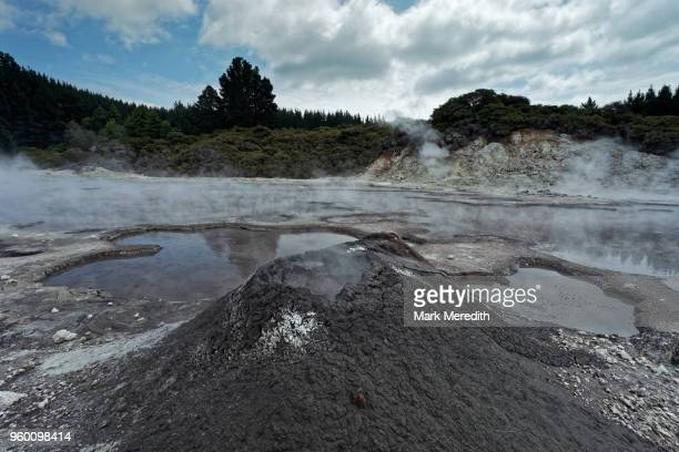 mud volcano at hells gate thermal park - rotorua stock pictures, royalty-free photos & images