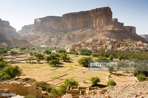 Mud-brick buildings in villages alongside Wadi Hadramaut