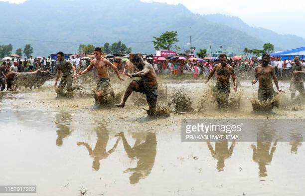 Mudcovered foreign tourists run through a rice paddy field to mark National Paddy Day which celebrates the start of the annual rice planting season...
