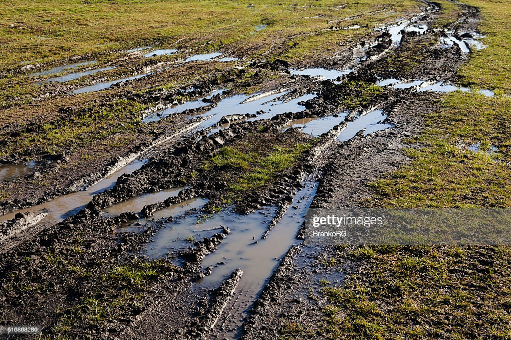 muddy country road : Stock Photo