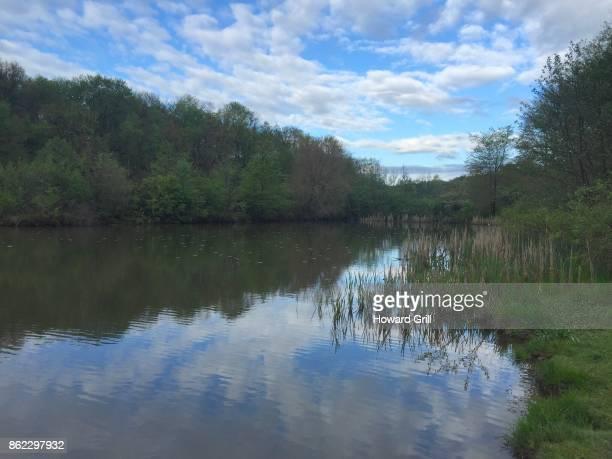 Muddy Creek, Moraine State Park