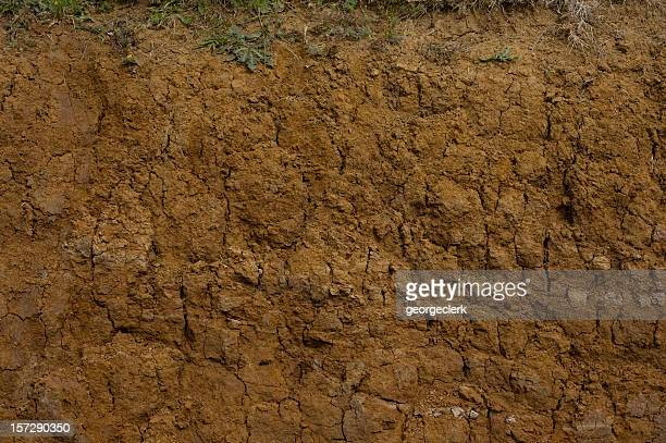 muddy cross section close-up - land stock pictures, royalty-free photos & images