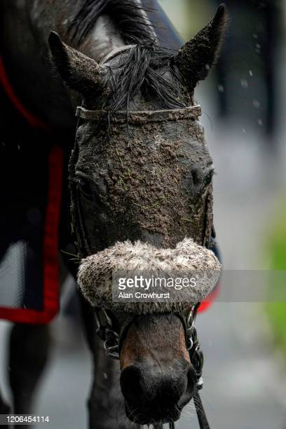 A muddy day at Ascot Racecourse on February 15 2020 in Ascot England