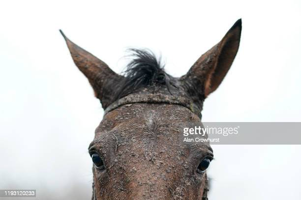 A muddy day at Fontwell Park Racecourse on December 10 2019 in Fontwell England