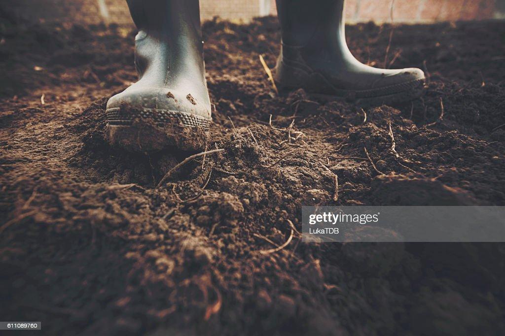 Muddy gardening boots : Stock Photo