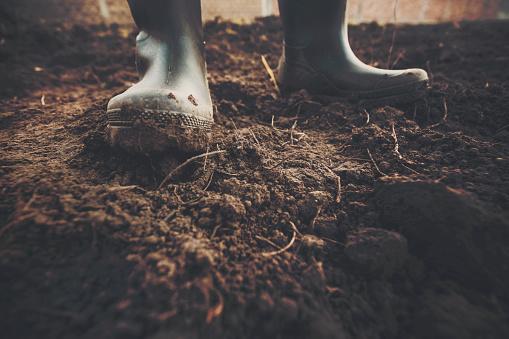 Muddy gardening boots 611089760