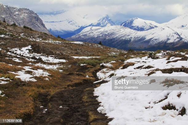 muddy hiking trail against snowcapped mountains - tundra stock pictures, royalty-free photos & images