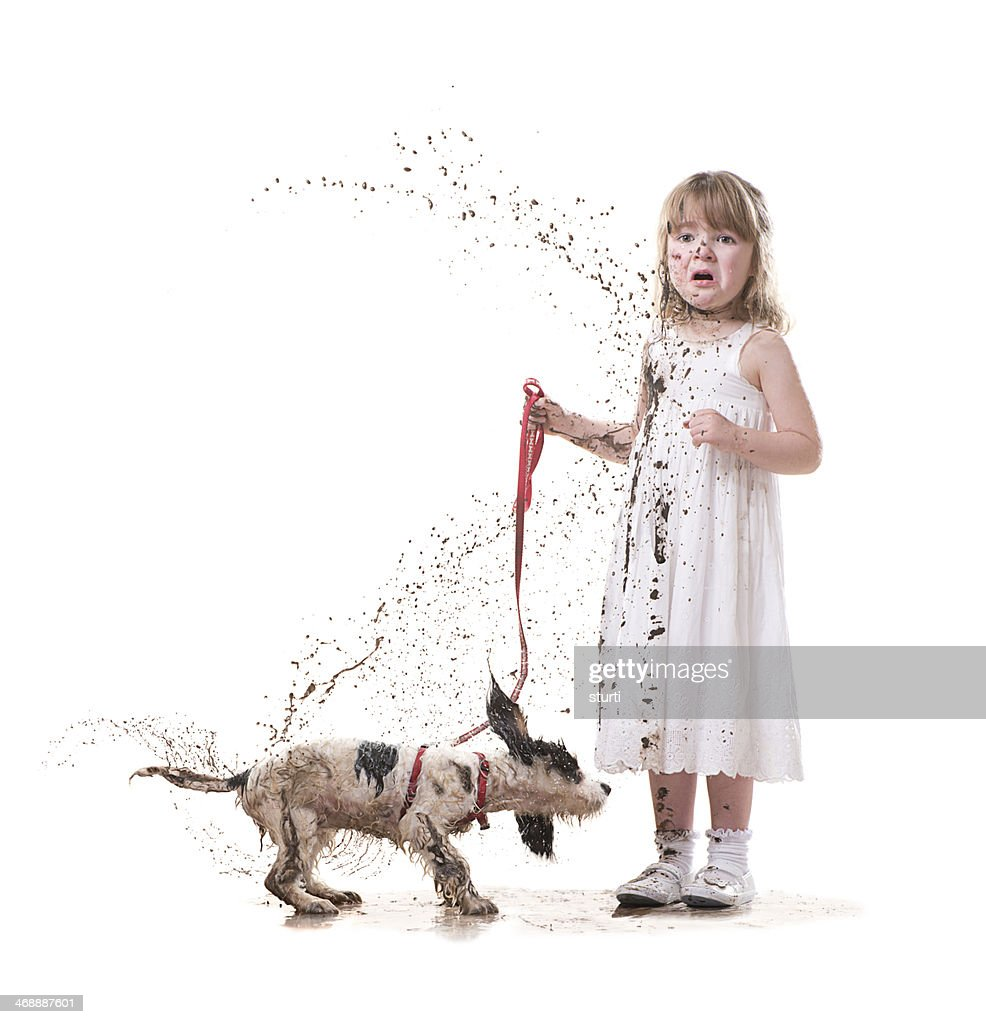 muddy puppy : Stock Photo