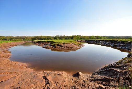Muddy River at Miner's Marsh, Kentville Trail, Kentville, Nova Scotia, Canada 800883824