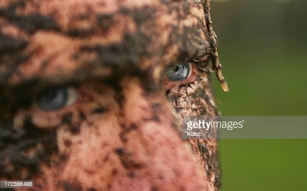 muddy rugby player eye - rugby league stockfoto's en -beelden