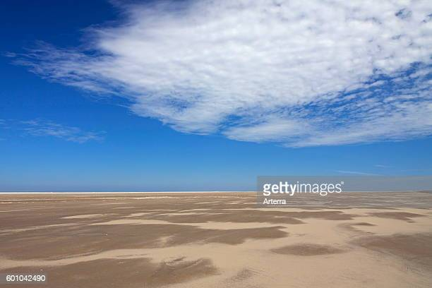Mudflats at low tide at the Wadden Sea National Park Germany
