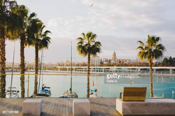 muelle uno malaga - waterfront stock pictures, royalty-free photos & images