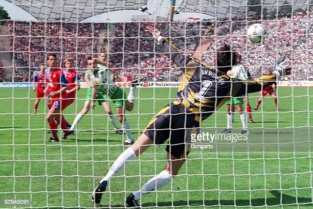 1 BUNDESLIGA 94/95 Muenchen FC BAYERN MUENCHEN SV WERDER BREMEN 31 TOR zum 10 durch Christian ZIEGE/BAYERN