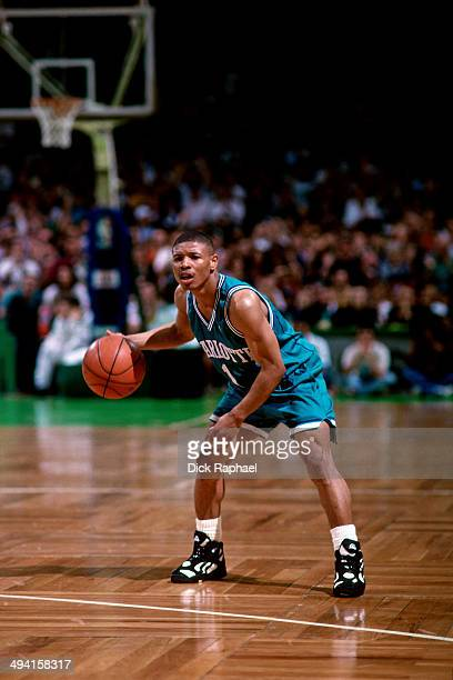Muggsy Bogues of the Charlotte Hornets dribbles against the Boston Celtics during a game played at the Boston Garden in Boston Massachusetts circa...