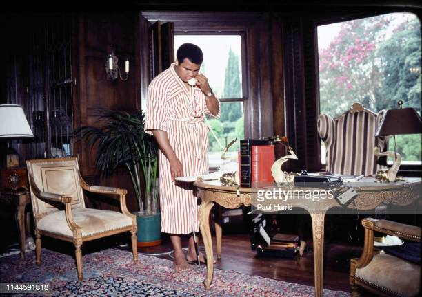Muhammad Ali at home in Los Angeles before his last fight with Larry Holmes, is it a real cat or a toy cat under the table, bottom left of the room,...