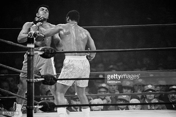 Muhammad Ali catches a left to the jaw from Joe Frazier near the end of their title bout in Madison Square Garden. Frazier retained his world...