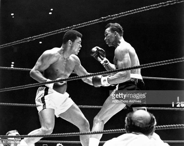 Muhammad Ali Cleveland Williams boxing at Astrodome November 14 1966