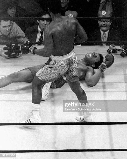Muhammad Ali grimaces on the canvas after taking a left hook from Joe Frazier in the 15th round of their first fight, billed as the 'Fight of the...