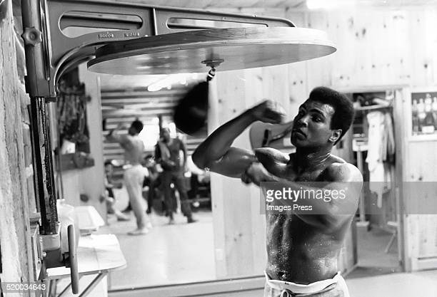 Muhammad Ali photographed at his training camp in Pennsylvania circa 1974