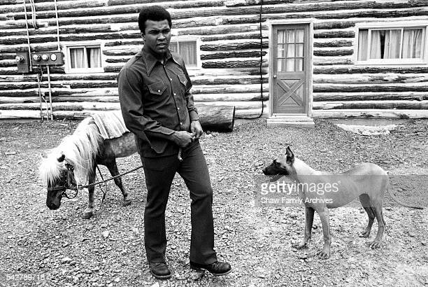 Muhammad Ali stands with a pony and a dog on the grounds of his training camp in 1976 in Deer Lake Pennsylvania