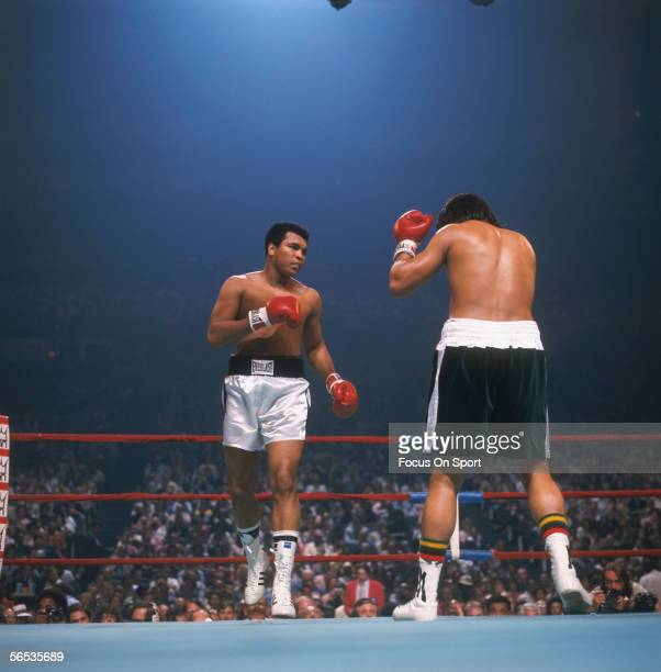 Muhammad Ali walks around his opponent before finishing the fight circa 1977 during a boxing match