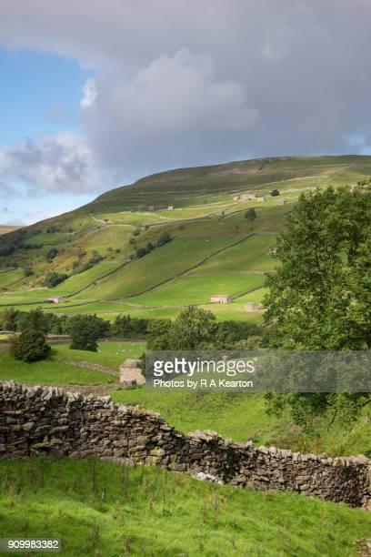 Muker, Swaledale, Yorkshire Dales, England