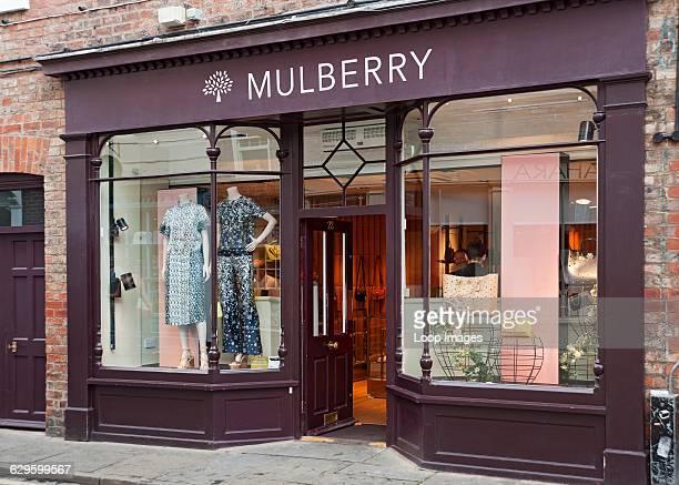 Mulberry shop window York England