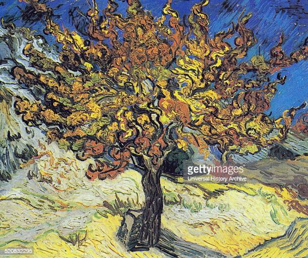 Mulberry Tree by Vincent Van Gogh a postimpressionist painter of Dutch origin Dated 1889