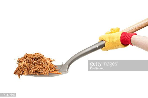 mulch on a shovel - mulch stock pictures, royalty-free photos & images