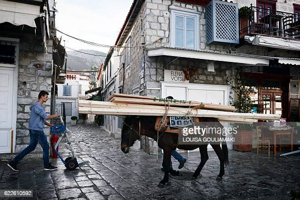 A mule carries building materials on the Greek island of Hydra where cars are prohibited on November 12 2016 / AFP / LOUISA GOULIAMAKI