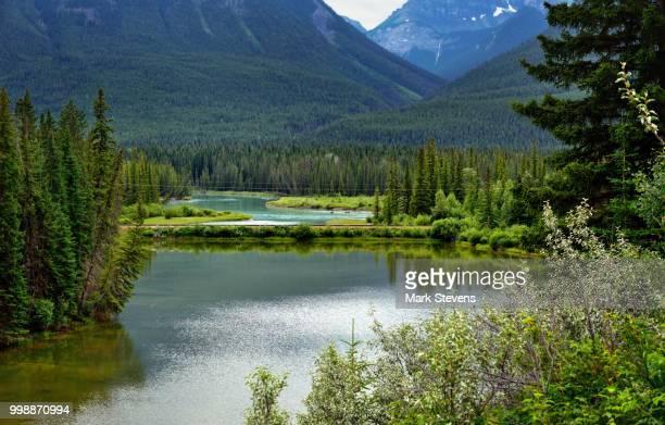 Mule Shoe Lake and a Hillside of Trees