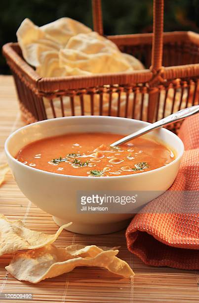 mulligatawny soup - jill harrison stock pictures, royalty-free photos & images