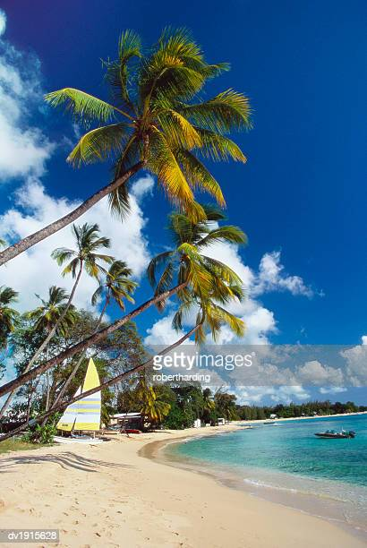 mullins beach, st peters parish, barbados, caribbean - barbados stock pictures, royalty-free photos & images