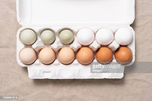 multi colored chicken eggs in carton - animal egg stock pictures, royalty-free photos & images
