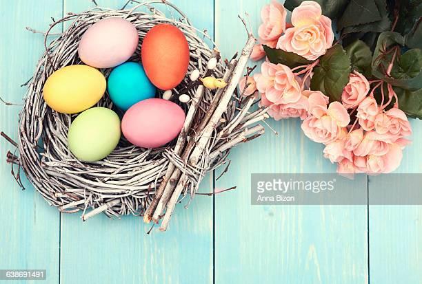 Multi colored eggs in the nest. Debica, Poland